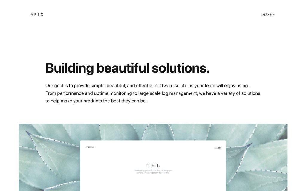 Screenshot of the website Apex Software