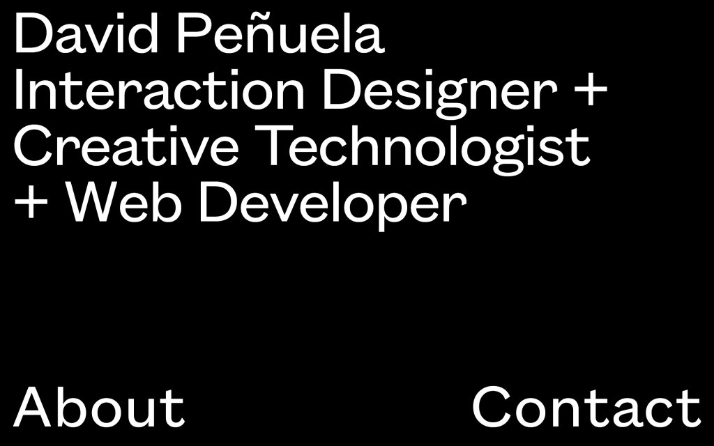 Screenshot of the website David Penuela
