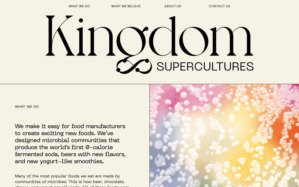 Screenshot of the website Kingdom Supercultures