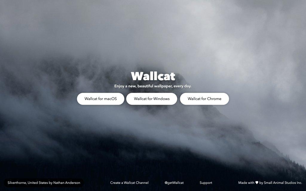 Screenshot of the website Wallcat